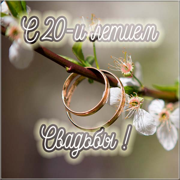 С днем свадьбы картинки прикольные 11 лет
